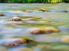 river flows-1 (estellerobertnyc) Tags: summer nature river stream stones riviere ete galet