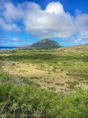 Hawaii w Karl & Grace-June 12, 2016 - 1229 (oregondew) Tags: hawaii oahu kokohead