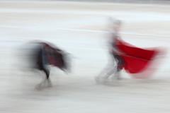 Bullfight, Arles (Paul McFarland) Tags: arena motionblur arles bullfight corrida