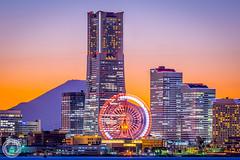 Great City off Kanagawa /  (45tmr) Tags: japan night twilight nightscape yokohama