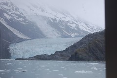 cep-dsc_0460 (honeyGwhiz) Tags: alaska glaciers princewilliamsound fjord floatingice miniicebergs