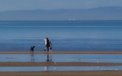 On a clear day ... (idunbarreid) Tags: tide low