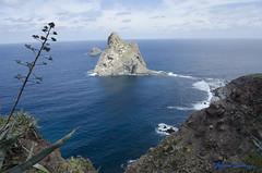 DSC_0138 (AlfredoGutirrez) Tags: blue sea naturaleza mountain nature azul trekking mar paisaje tenerife montaa senderismo naturalpark parquenatural anaga roquesdeanaga