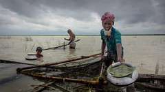 people of padma (Extinted DiPu) Tags: sky color water canon river photography fishing flickr riverside exploring lifestyle bank scout explore android 18mm padma lifescape photoscape lifestyleofbangladesghipeople peopleofpadma