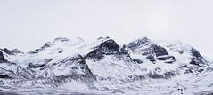 IMG_1376 (Pramodh Yapa) Tags: columbia alberta icefield