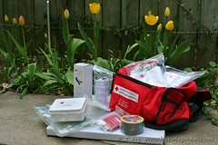 First Aid Kit by REMO Annapolis (Historic Gardens) Tags: dinner spring novascotia 26 auction may historicgardens annapolisroyal 2013