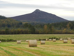 Bennachie, Aberdeenshire, October 2012, Explored (allanmaciver) Tags: life history john wonder october university aberdeenshire country farming harvest story aberdeen marjory fields bales harper dickie 2012 bennachie autobiography explored allanmaciver creativephotocafe