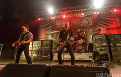 volbeat_madison_2013 (13)