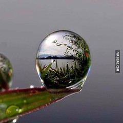 Incredible macro photography (Future Fun) Tags: laughing fun funny lol humor freaky laugh epic fail