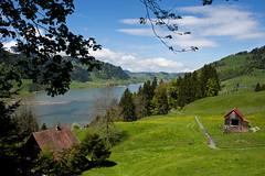 Lake overlook (Brett Ritzmann) Tags: mountain lake mountains alps clouds switzerland europe hiking hikingtrail swissalps wanderweg ybrig sihlsee