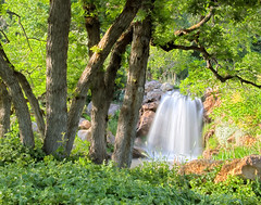 Waterfall and Oak Trees (Utah Images - Douglas Pulsipher) Tags: pictures travel flowers trees summer plants lake tourism nature water gardens forest garden landscape botanical photography evening utah photo waterfall pond oak scenery stream afternoon view natural image grove photos gardening landscaping scenic picture arboretum images location saltlakecity photographs photograph waterfalls views cascades streams flowing waterfeature cascade botanicalgarden touristattraction oaktrees imagery universityofutah stockphoto redbuttegardens landscaped scruboak childrensgarden redbuttegarden photosof gambeloak