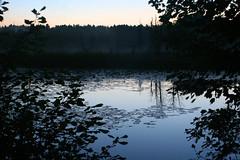 IMG_8520 (Dan Correia) Tags: amherst twilight sunrise swamp reflection canonef35mmf2 15fav topv111 510fav topv333 topv555 topv777
