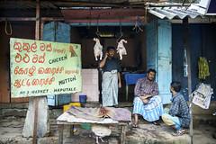 no 3 market (Mark Panszky) Tags: men chicken phonecall srilanka chatting mutton butchershop haputale