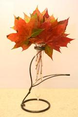 Autumn leaves (arfi_arfi) Tags: autumn red plants color macro green art nature colors beauty leaves yellow leaf flora artistic artisticphotography flowerscolors amazingdetails