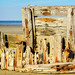 Old Wooden Breakwater