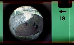 bear pit (pho-Tony) Tags: camera old fish color colour eye film toy iso200 miniature lomography fuji 110 toycamera wide fisheye number novelty edge 200 frame pocket expired 16mm toycameras markings 170 instamatic cartridge perforation fujicolor c41 subminiature arror tetenal 170degrees edgemarkings fisheyebaby110