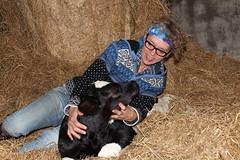 oh my Sweet Baby  Explore # 92 ( 26-10-2013 Thanks !!! (excellentzebu1050) Tags: born farm birth explore calf explored animails mygearandme flickrstruereflection1 thegoldenachievement