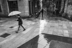 _DSF0309 (racrunez) Tags: lluvia paraguas reflejos