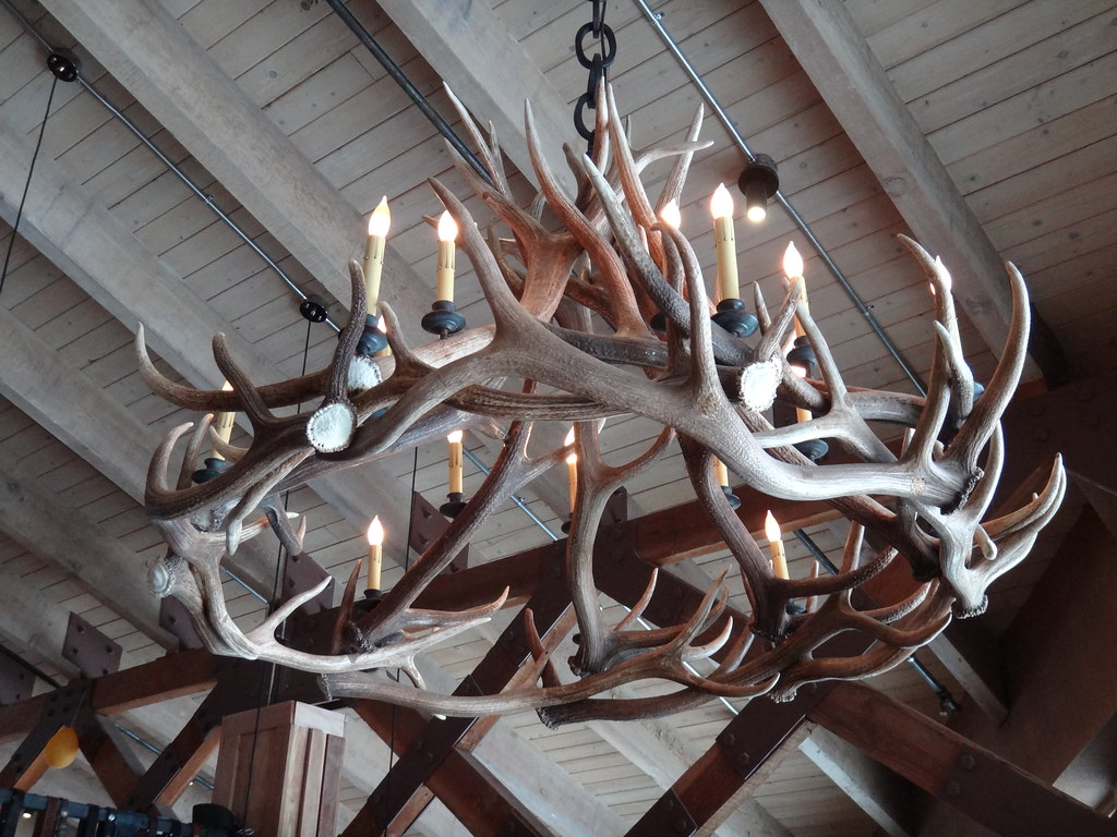 Antler chandelier by dionhinchcliffe, on Flickr