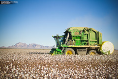 John Deere Cotton Picker (Andrew Vicars) Tags: green photography farm andrew cotton ag agriculture jd bale johndeere picker vicars cottonpicker