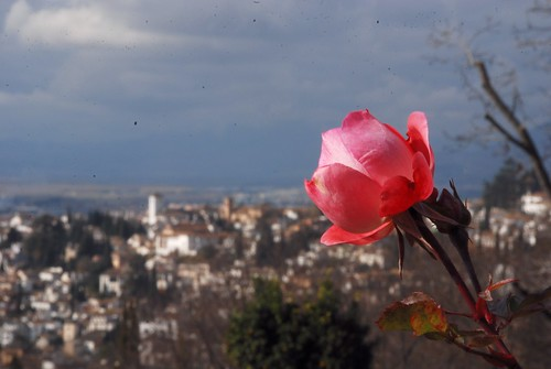 """Granada-DSC_0611_093 • <a style=""""font-size:0.8em;"""" href=""""http://www.flickr.com/photos/103823153@N07/12276643023/"""" target=""""_blank"""">View on Flickr</a>"""