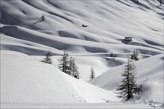 Dolomiti - Val di Fassa (Luigi Alesi) Tags: winter italy white snow ski landscape nikon scenery italia raw unesco val neve di coolpix inverno paesaggio sci trentino dolomiti canazei dolomiten patrimonio campitello fassa p330 mygearandme mygearandmepremium mygearandmebronze mygearandmesilver
