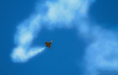 volando en otoño 2014 002