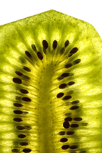 "kiwi • <a style=""font-size:0.8em;"" href=""http://www.flickr.com/photos/22289452@N07/14071888036/"" target=""_blank"">View on Flickr</a>"