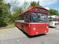 Ex Warrington Corporation in Preservation. KED 546F (P@ul's Tr@nsport @lbums) Tags: bus vintage cub warrington east corporation panther preservation leyland psv lancs ked546f