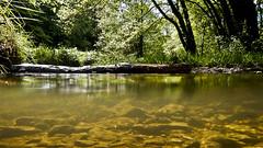 Brook (a.penny) Tags: creek search nikon underwater bach coolpix brook taunus unterwasser apenny niedernhausen flus theisstal aw120