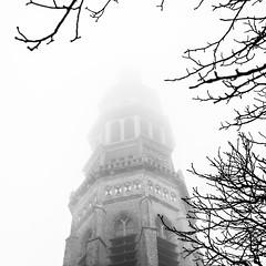 Hiding in the mist (Wouter de Bruijn) Tags: blackandwhite mist monochrome fog square branches churchtower mysterious fujifilm mystical middelburg langejan xt1 fujinonxf35mmf14r