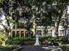 Funchal Gardens, Madeira (Tony Tomlin) Tags: madeira funchal municipalgardens