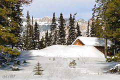 The Cabin in the Woods (~ Mariana ~) Tags: winter sky snow canada nature landscape cabin nikon ab rockymountains mariana stormmountain travelsofhomerodyssey outstandingromanianphotographers marculescueugendreamsoflightportal