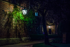 Lamplight (Jonny Rowlands) Tags: cambridge light building tree college lamp night glow jesus radiance ivy foliage fantasy narnia