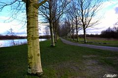 Little lane (EeyaEeya) Tags: trees green flickr line lane neat straight haarlemmermeer