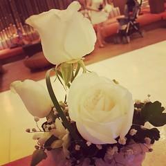 จริงๆอยากได้แบบนี้ กุหลาบสีขาว ดอกเดียวก็ได้ แต่ความจริงที่ได้คือ โทรมาบอกว่า ให้โทรหาแม่ บอกรักแม่ และส่งรูปตัวเองมาให้ คือ???? #MYPM #myValentine
