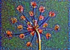Parsnip1Dream (Bugldy99) Tags: flower photomanipulation manipulated surrealism surreal manipulation parsnip photomanipulated dreamscope fotomanipulation fotomanipulated photosurrealism fotosurrealism
