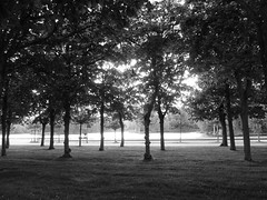Allee of trees by the canal at the Chateau de Rambouillet, France (Monceau) Tags: trees blackandwhite france garden canal rambouillet chteauderambouillet