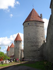 Torens en muren van Tallinn