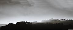Toskana 9 (rainerneumann831) Tags: italien panorama blackwhite lowkey landschaft toskana beimontalcino