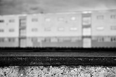 Mannheim Hafen 3 (rainerneumann831) Tags: blackwhite haus architektur hafen gebude mannheim unschrfe
