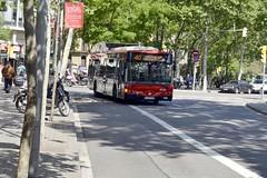 AUTOBÚS - LÍNIA 40 - 6734 - 0363 FFG (Yeagov_Cat) Tags: barcelona bus catalunya 40 tmb autobús 2016 6734 passeigdelluíscompanys passeiglluíscompanys transportsmetropolitansdebarcelona línia40 irisbus491e1225nogecittourhybrid 0363ffg