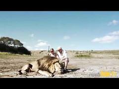 Un couple de chasseurs fait une photo avec un lion mort (ffarid13) Tags: de photo couple mort lion un fait une avec chasseurs