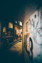 2016091 (gwagwa) Tags: street japan tokyo alley 20mm nikkor f28s