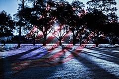 Bay Pines National Cemetery (SpookyBoo Studios) Tags: cemetery photoshop patriotic 1022mm memorialday jimrobinson 7dmarkii