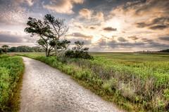 _DSC5447_8_9a-Edit-1 (Curtis Cabana Photography) Tags: sunset sunrise southcarolina charleston trail marsh lowtide hightide edisto lowcountry boneyardbeach botanybayplantation curtiscabana