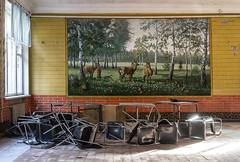 DSC02769 (Igor) Tags: urban abandoned rust decay murals forgotten urbanexploration birch decayed ussr birke  lostplaces sonya7 ilce7