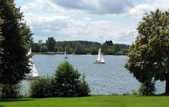 Losheim am See (Saarland / Deutschland) (p_jp55 (Jean-Paul)) Tags: sailboat germany deutschland allemagne yole segelboot voilier saarland sailingboat stausee saarlorlux sarre waterreservoir lacartificiel losheimamsee