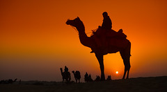india (peo pea) Tags: sunset india sand tramonto dune gran sole thar deserto cammello