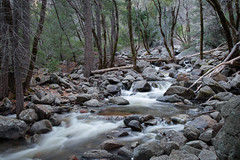 Stream 0163-1 (blackhawk32) Tags: landscapes woods streams yosemitenationalpark bridalveilcreekcampground